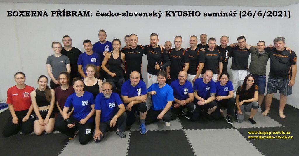 BOXERNA PŘÍBRAM: Česko-slovenský seminář KYUSHO (26/6/2021)